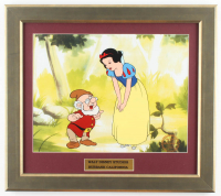 "Walt Disney's ""Snow White & the Seven Dwarfs"" 15.5x17.5 Custom Framed Animation Serigraph Display at PristineAuction.com"