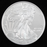 2020 American Silver Eagle $1 One Dollar Coin at PristineAuction.com
