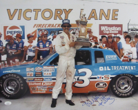 Richard Petty Signed NASCAR 16x20 Photo (JSA COA) at PristineAuction.com