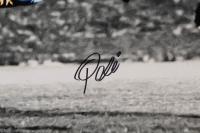 Pele Signed Team Brazil 16x20 Photo (PSA COA) at PristineAuction.com