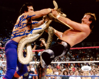 """Ricky """"The Dragon"""" Steamboat Signed 8x10 Photo (JSA COA) at PristineAuction.com"""