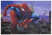 "Stan Lee Signed ""Spider-Man"" 24x36 Stretched Canvas (Beckett LOA & Lee Hologram) at PristineAuction.com"