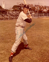 Ted Williams Signed Red Sox 8x10 Photo (JSA ALOA) at PristineAuction.com