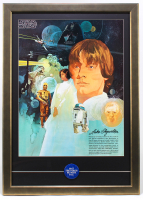 "Star Wars 22x31 Custom Framed Print Display with Original 1977 ""May the Force Be With You"" Pin at PristineAuction.com"