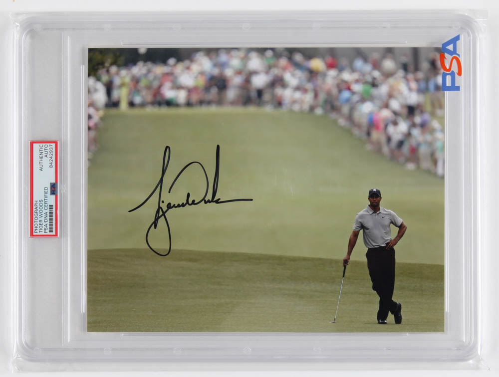 Tiger Woods Signed 8x10 Photo (PSA Encapsulated) at PristineAuction.com