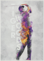 Tiger Woods 12x17 Limited Edition Metal Art Print at PristineAuction.com
