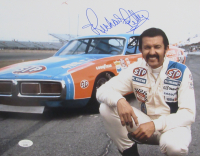 Richard Petty Signed NASCAR 11x14 Photo (JSA COA) at PristineAuction.com