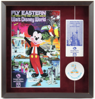 Disneyland 19.5x20.5 Custom Framed Shadowbox Display with Vintage Dish & Pamphlet at PristineAuction.com
