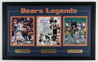 Dick Butkus, Walter Payton, & Gale Sayers Signed Bears 20.5x32 Custom Framed Photo Display (SOP COA) at PristineAuction.com