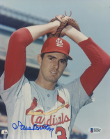 Steve Carlton Signed Cardinals 8x10 Photo (Beckett Hologram) at PristineAuction.com