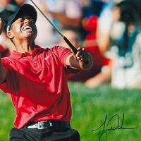 Tiger Woods Signed 30x40 Photo (UDA COA) at PristineAuction.com