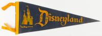 Vintage Disneyland Souvenir Felt Pennant at PristineAuction.com