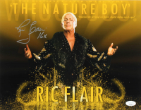 "Ric Flair Signed WWE 11x14 Photo Inscribed ""16x"" (JSA COA) at PristineAuction.com"