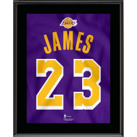 Lebron James Lakers 10.5x13 Custom Framed 2018-19 Jersey Number 23 Photo at PristineAuction.com