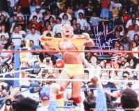 Hulk Hogan Signed 16x20 Photo (COJO COA) at PristineAuction.com