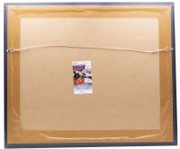 Richard Petty Signed NASCAR 22x27 Custom Framed Photo (JSA COA) at PristineAuction.com