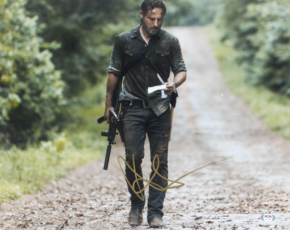 """Andrew Lincoln Signed """"The Walking Dead"""" 16x20 Photo (PSA Hologram) at PristineAuction.com"""