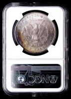 1902-O Morgan Silver Dollar (NGC MS66+) (Toned) at PristineAuction.com