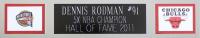Dennis Rodman Signed 35x43 Custom Framed Jersey (JSA COA) at PristineAuction.com