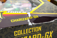 Lot of (3) Pokemon Hidden Fates Collection Box / Raichu-GX, Gyarados-GX, & Charizard-GX at PristineAuction.com