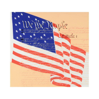 """Steve Kaufman Signed """"We the People"""" Limited Edition 20x20 Silkscreen on Canvas #45/50 at PristineAuction.com"""