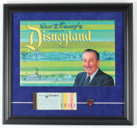 Walt Disneyland's 15x16 Custom Framed Print Display with 1964 Souvenir Guide, Ticket Book & Lapel Pin at PristineAuction.com