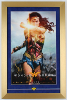 Wonder Woman 14x21 Custom Frame Poster Display with Official Wonder Woman DC Pin at PristineAuction.com