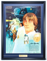 Star Wars 22.75x29.75 Vintage 1977 Coca Cola Custom Framed Poster Display at PristineAuction.com