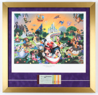 "Walt Disney ""A Magical Time in a Magical Place"" 20x21 Custom Framed Print Display With Vintage Ticket Booklet at PristineAuction.com"