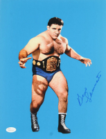 Bruno Sammartino Signed 11x14 Photo (JSA COA) at PristineAuction.com