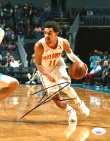 Trae Young Signed Hawks 8x10 Photo (JSA COA) at PristineAuction.com