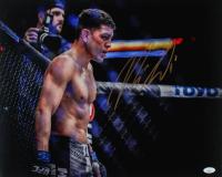Nick Diaz Signed UFC 16x20 Photo (JSA COA) at PristineAuction.com