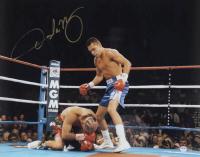 Oscar De La Hoya Signed 16x20 Photo (PSA COA) at PristineAuction.com