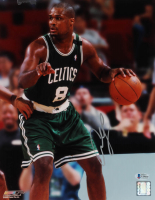 Antoine Walker Signed Celtics 11x14 Photo (Beckett COA) at PristineAuction.com