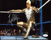 Goldust Signed WWF 8x10 Photo (JSA COA) at PristineAuction.com