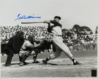 Ted Williams Signed Red Sox 16x20 Photo (Williams COA) at PristineAuction.com