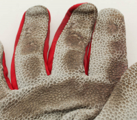 Pair of (2) Brandon Drury Signed Game-Used Batting Gloves (JSA COA) at PristineAuction.com