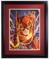 The Flash DC Comics 16x23 Custom Framed Photo Display at PristineAuction.com