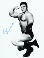 Bruno Sammartino Signed WWE 11x14 Photo (JSA COA) at PristineAuction.com