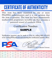 Hailie Deegan Signed 8x10 Photo (PSA COA) at PristineAuction.com