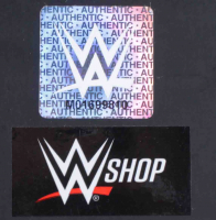 Triple H Signed Side Plate Display Box (JSA COA) at PristineAuction.com