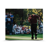 Tiger Woods Signed 20x24 Photo (UDA COA) at PristineAuction.com