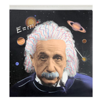 """Steve Kaufman Signed """"Albert Einsein Universe""""  27x25 Limited Edition Hand Pulled Silkscreen Mixed Media on Canvas at PristineAuction.com"""