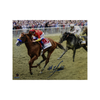 Mike Smith Signed 8x10 Photo (Steiner Hologram) at PristineAuction.com