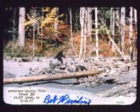 "Bob Gimlin Signed ""Bigfoot"" 8x10 Photo Inscribed ""10/20/1967"" (JSA COA) at PristineAuction.com"
