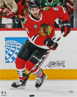 Nick Schmaltz Signed Blackhawks 16x20 Photo (Fanatics Hologram) at PristineAuction.com