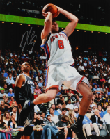 Danilo Gallinari Signed Knicks 16x20 Photo (Steiner COA & Fanatics Hologram) at PristineAuction.com