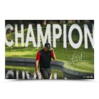 Tiger Woods Signed 16x24 LE Photo (UDA COA) at PristineAuction.com