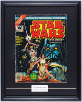 "1977 ""Star Wars"" Issue #1 Marvel 16x20 Custom Framed Comic Book Display (See Description) at PristineAuction.com"