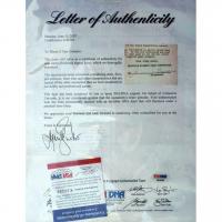 James Braddock & Max Baer Signed 22.5x37.5 Custom Framed Letter Display (PSA LOA & PSA COA) at PristineAuction.com